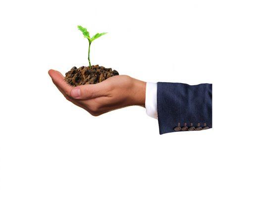 BNI Hà Nội - Chiết lý trồng trọt không săn bắn